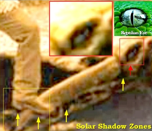 Paiva's analysis of solar shadow zones and a vertical pupil